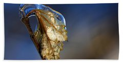Hand Towel featuring the photograph The Last Leaf  by Debbie Oppermann