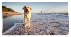 Happy Dog Ona Beach Bath Towel