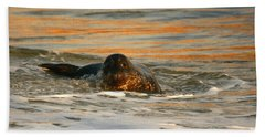 Bath Towel featuring the photograph La Jolla Seal Sunset by John F Tsumas