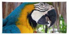 Harvey The Parrot 2 Bath Towel