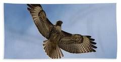 Hawk In Flight  Bath Towel
