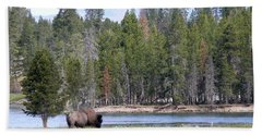 Hayden Valley Bison Hand Towel by Laurel Powell
