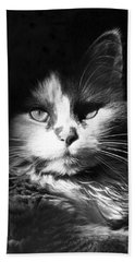 Head Shot Of Black & White Cat Hand Towel