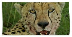 Head Shot Of Cheetah With Bloody Face Bath Towel