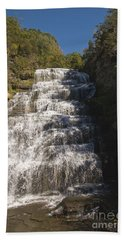 Hector Falls Hand Towel by William Norton