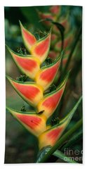 Heliconia Inflorescence Bath Towel