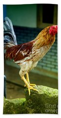 Hen On The Wall Hand Towel