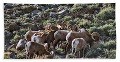 Herd Of Horns Bath Towel by Jeremy Rhoades
