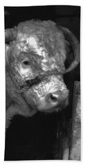 Hereford Bull In Black And White Hand Towel