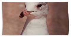 Hand Towel featuring the photograph Beach Gull On The Hunt by Belinda Lee