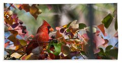Hiding Away Hand Towel by Linda Unger