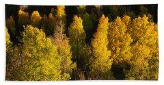 High Angle View Of Aspen Trees Bath Towel
