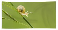 High Speed Snail Hand Towel by Mircea Costina Photography