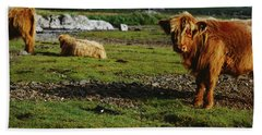 Highland Cattle On A Grassy Field, Isle Hand Towel