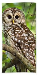 Hand Towel featuring the photograph Hoot Owl by Christina Rollo