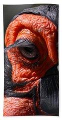 Hornbill Closeup Hand Towel by David Salter