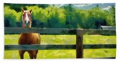 Horse In The Field Hand Towel by Jeff Kolker