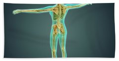 Human Body Showing Skeletal System Bath Towel