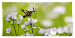 Hummingbird Clearwing Moth Flying Away Bath Towel
