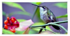 Hummingbird Hand Towel by Deena Stoddard