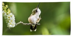 Hand Towel featuring the photograph Hummingbird Flexibility by Christina Rollo