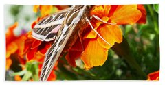 Hummingbird Moth On A Marigold Flower Bath Towel