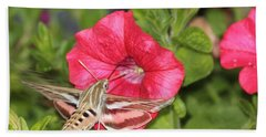 Hummingbird Moth Hand Towel