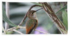 Hummingbird On A Branch Bath Towel
