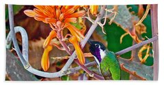 Hummingbird On Aloe In Living Desert In Palm Desert-california Hand Towel