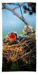 Hungry Tree Swallow Fledgling In Nest Hand Towel
