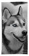 Bath Towel featuring the photograph Husky Portrait by Vicki Spindler