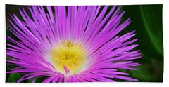 Ice Ice Baby - Flower Photography By Sharon Cummings Hand Towel