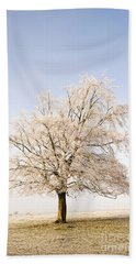 Iced Tree Hand Towel