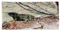 Bath Towel featuring the photograph Iguana Iguana by Amar Sheow