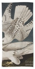 Illustration From Birds Of America Hand Towel by John James Audubon