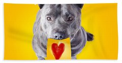 Imploring Staffie With A Sticky Note On His Mouth Hand Towel