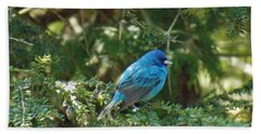 Indigo Bunting Visit Bath Towel by Brenda Brown