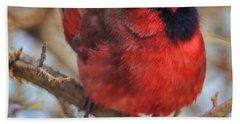 Inquisitive Cardinal Bath Towel