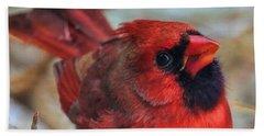 Inquisitive Cardinal Hand Towel