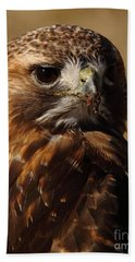 Red Tailed Hawk Portrait Hand Towel