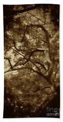 Into The Dark Wood Bath Towel by Dan Stone