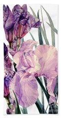 Watercolor Of An Elegant Tall Bearded Iris In Pink And Purple I Call Iris Joan Sutherland Bath Towel