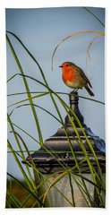 Irish Robin Perched On Garden Lamp Hand Towel