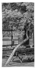 Jackson Square Bench And Tree Bath Towel