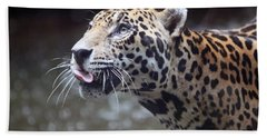 Jaguar Sticking Out Tongue Hand Towel