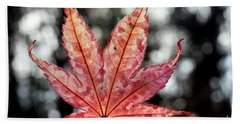 Japanese Maple Leaf - 2 Bath Towel by Kenny Glotfelty