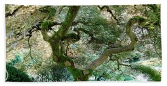 Japanese Maple Tree II Bath Towel by Athena Mckinzie