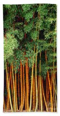 Bath Towel featuring the photograph Just Bamboo by Sue Melvin