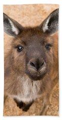 Kangaroo Island Kangaroo Hand Towel by Marie Read