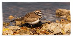 Kildeer On The Rocks Hand Towel by Robert Frederick